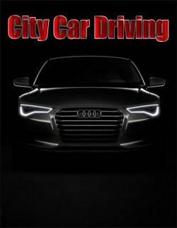 City Car Driving (2016, PC)