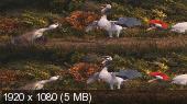 Без черных полос (на весь экран) Папа-мама гусь 3D / Duck Duck Goose 3D ( by Amstaff) Вертикальная анаморфная стереопара