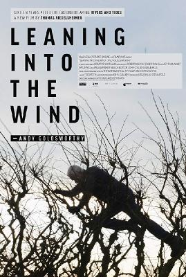 Творить вместе с ветром: Энди Голдсуорти / Leaning Into the Wind: Andy Goldsworthy (2017)