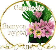 Награды Raya 1a78df5abe82d0bb020190d5c3b2e533